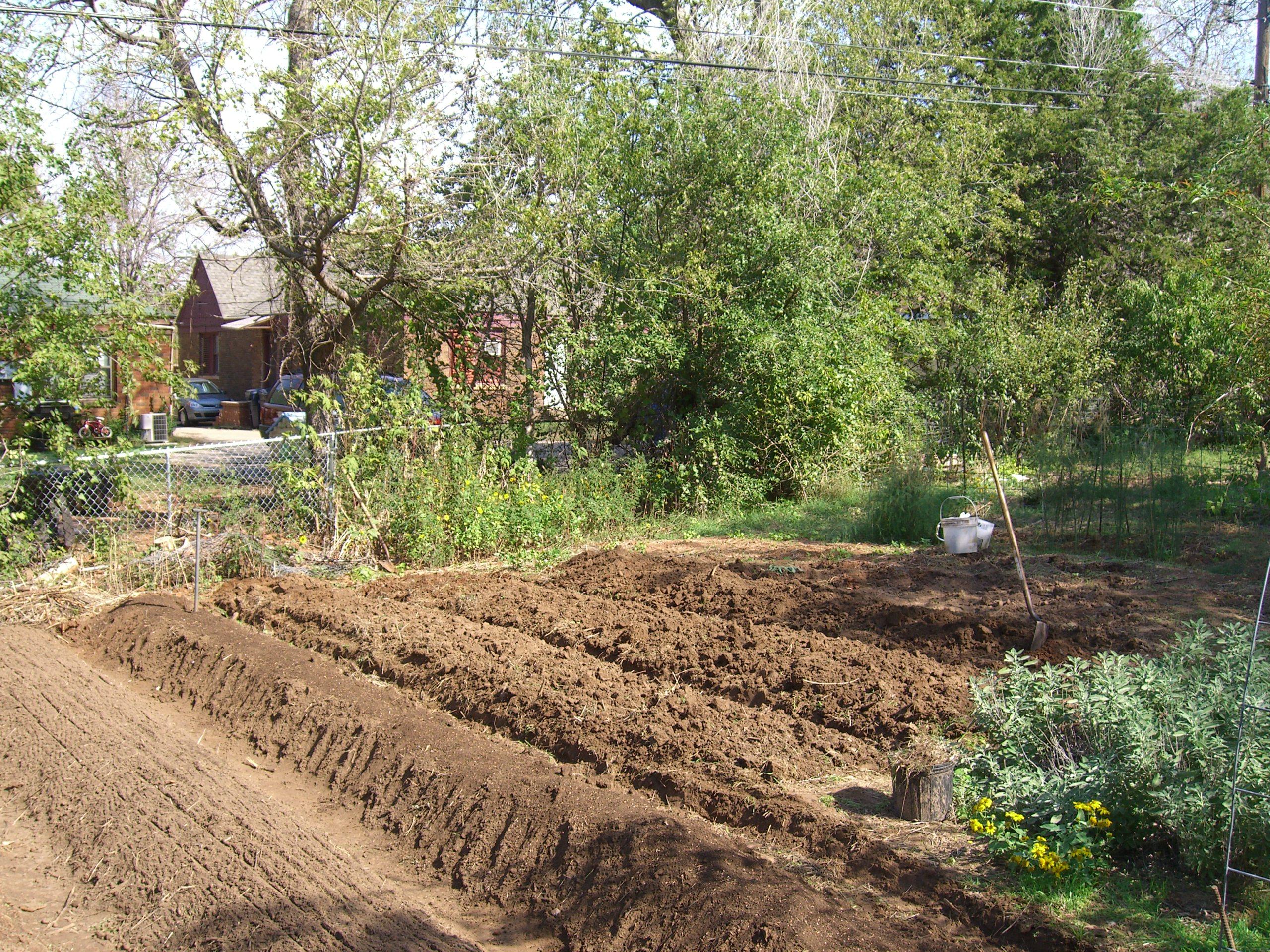 Preparing vegetable garden for spring planting container for Preparing for spring