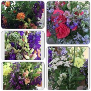 Flowers 5-20-15