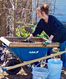 sifting compost Melissa